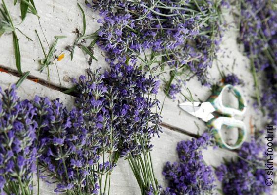 lavanda-poleznie-svojstva